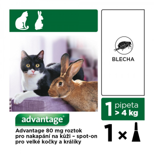 ADVANTAGE 80 10% 1x0,8 ml pro kočky nad 4 kg