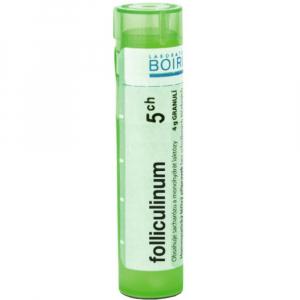 BOIRON Folliculinum CH5 4 g