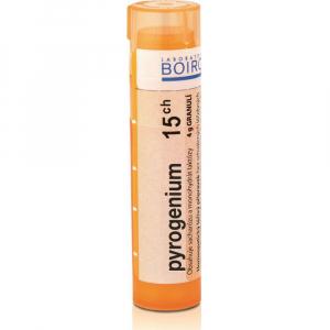 BOIRON Pyrogenium CH15 4 g