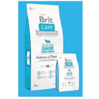 BRIT Care Dog Grain-free Junior LB Salmon & Potato 3 kg