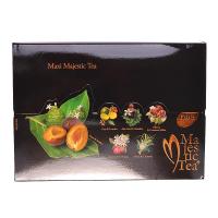 BIOGENA Maxi Majestic Tea 60 čajových sáčků
