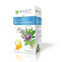 MEGAFYT Čajová směs pro klidný spánek 20 x 2,1 g