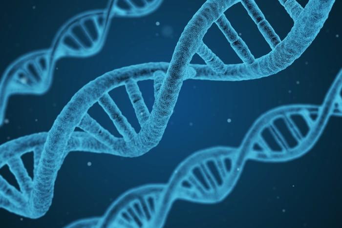 DNA (deoxyribonukleová kyselina) – základ života