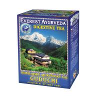 EVEREST AYURVEDA Guduchi zažívání a chuť k jídlu sypaný čaj 100 g