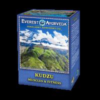 EVEREST AYURVEDA Kudzu posílení svalstva a fitness  sypaný čaj 100 g