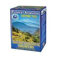 EVEREST AYURVEDA Shunthi žaludek a střeva sypaný čaj 100 g