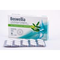 FAVEA Boswellia s chondroitinem a kolagenem 30 tablet