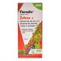 SALUS Floradix Železo+ 250 ml