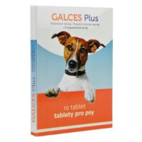 GALCES Plus 10 tablet