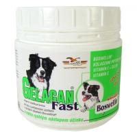 GELACAN Fast 150 g