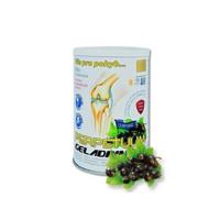 GELADRINK Perpetuum práškový nápoj s příchutí černý rybíz 500 g