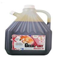 GELAPONY Biotin H  Biosol 3000 ml