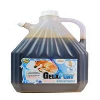 GELAPONY Chondro Biosol 3000 ml