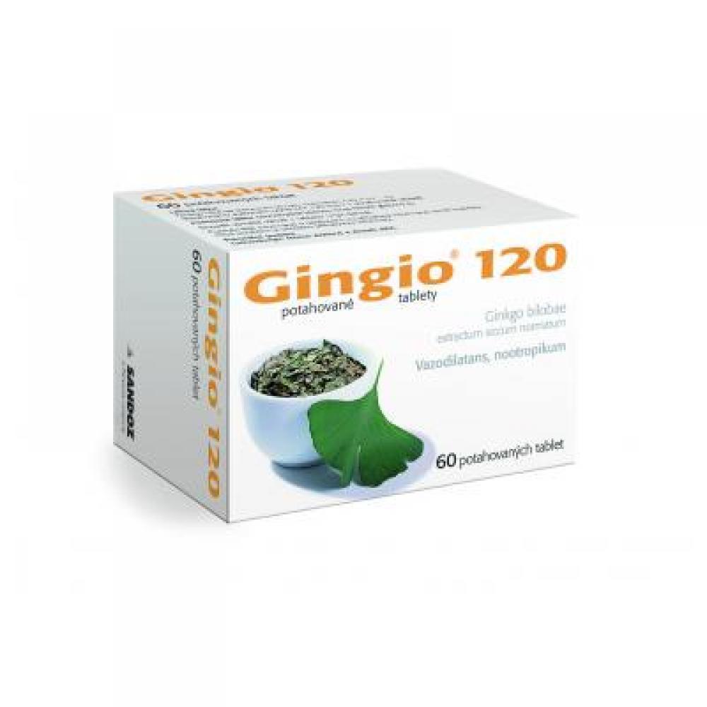GINGIO 120 60X120MG Potahované tablety