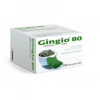 GINGIO 80  120X80MG Potahované tablety