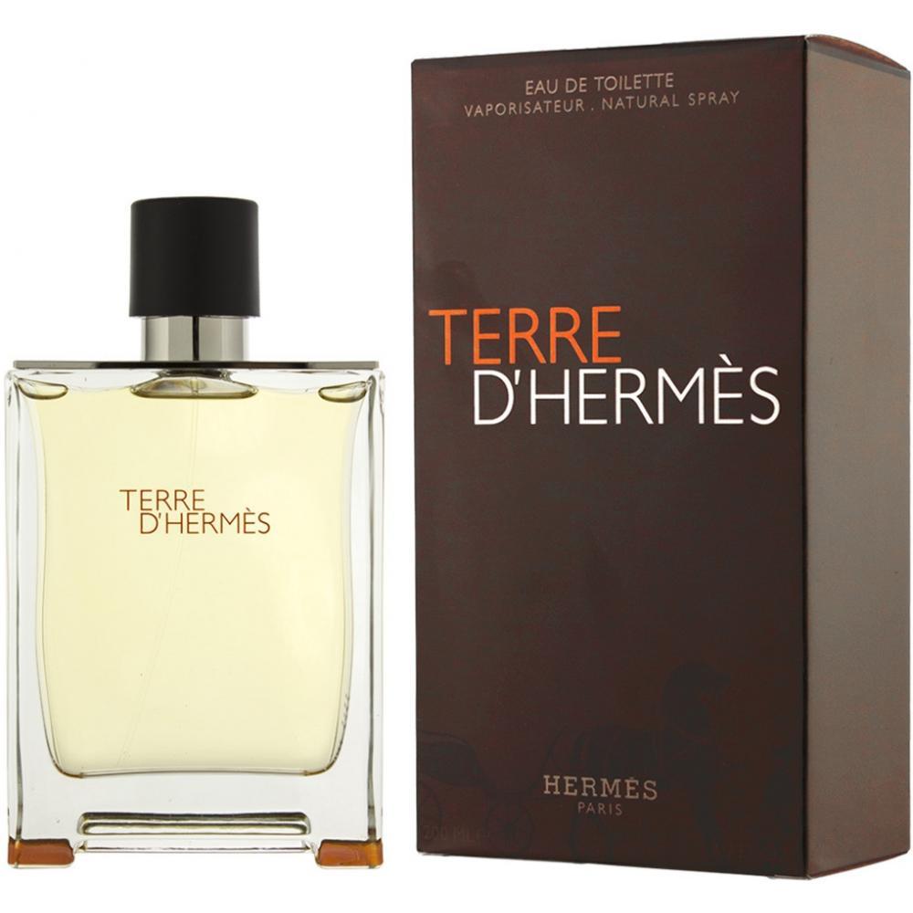 Hermes Terre D'Hermes toaletní voda pánská 100 ml