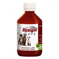 HYALGEL Dog Original jablko 500 ml