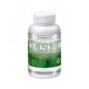 KOMPAVA Msm 500 mg 120 kapslí