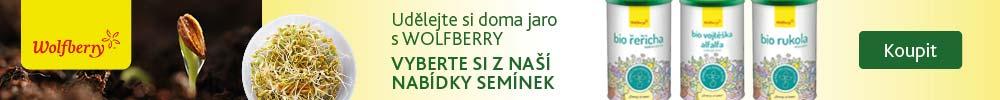 KT_wolfberry_seminka_na_kliceni