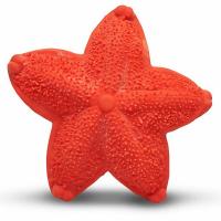 LANCO Mořská hvězdice