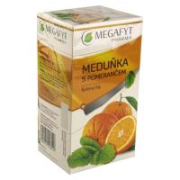 MEGAFYT Ovocný Meduňka s pomerančem 20x2 g