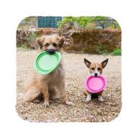 BECO Bowl Travel EKO Cestovní miska pro psy modrá S