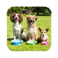 BECO Bowl Travel EKO Cestovní miska pro psy růžová S