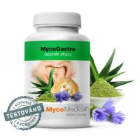 MYCOMEDICA Mycogastro sypká směs na přípravu nápoje 90 g