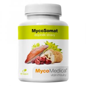 MYCOMEDICA MycoSomat 90 kapslí