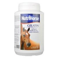 NUTRI HORSE Gelatin pro koně 1 kg