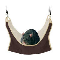 TRIXIE Odpočívadlo pro krysy a fretky 30x30 cm 1 kus