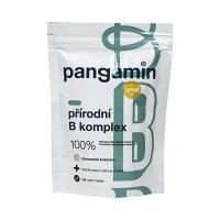 PANGAMIN Přírodní B komplex 120 tablet