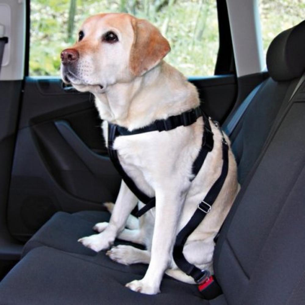 Postroj pes Bezpečnostní do auta L Trixie