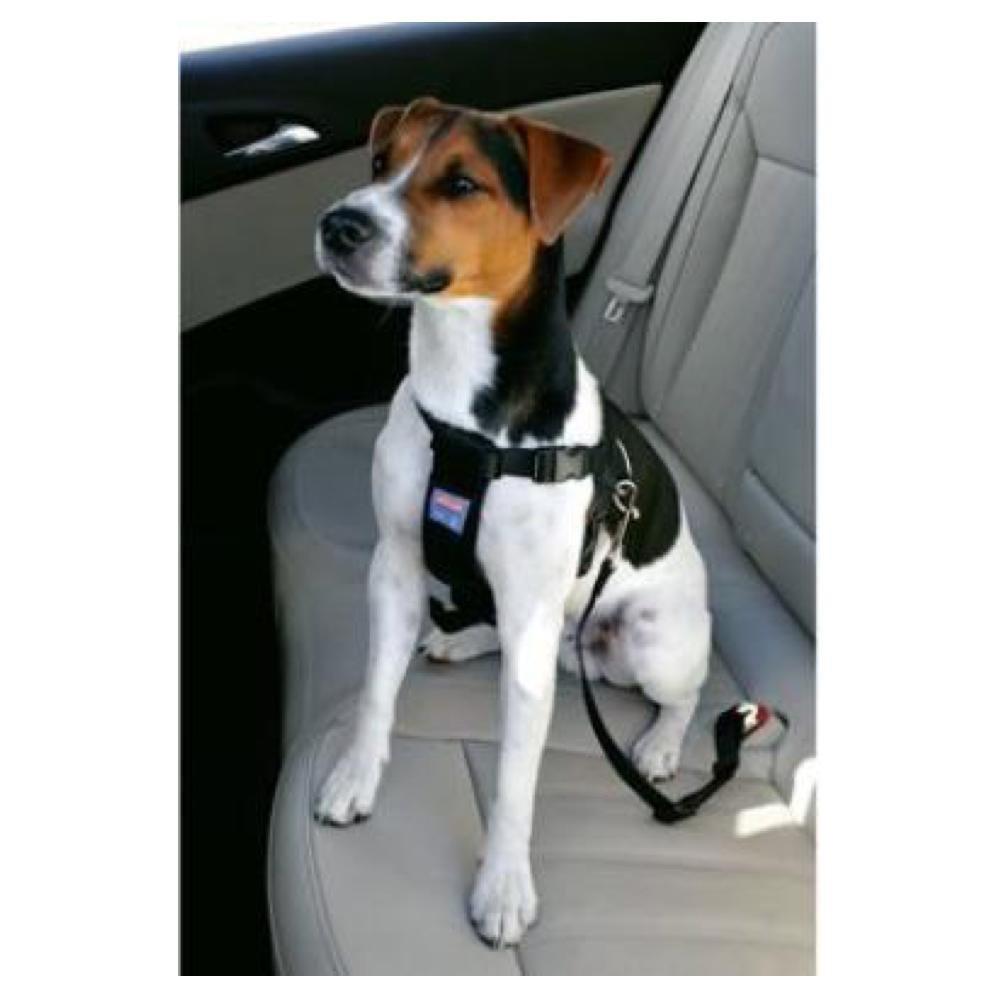 ZOLUX Bezpečnostní postroj do auta pro psa S