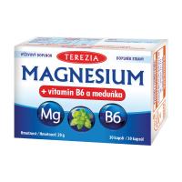 TEREZIA MAGNESIUM + vitamin B6 a meduňka 30 kapslí