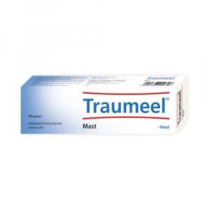 TRAUMEEL S 1x50 g Mast