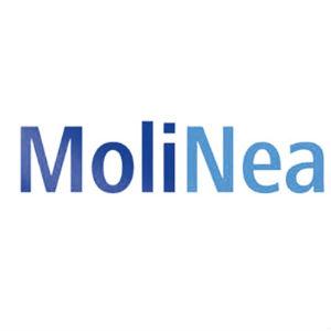 MOLINEA