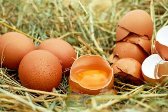 Vitamín B5 (kyselina pantothenová) hojí zevně i uvnitř