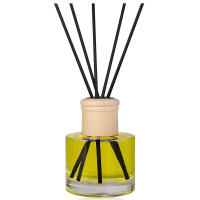 WINTER MAGIC Difuzér ve skleněné lahvičce 100 ml včetně dárkové krabičky, 5 difuzérových tyčinek s vůní vanilky