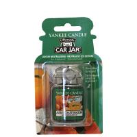 YANKEE CANDLE Car Jar Luxusní visačka do auta  Alfresco Afternoon 1 ks